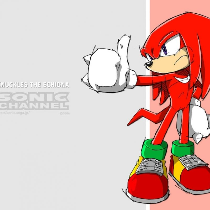 10 Most Popular Knuckles The Echidna Background FULL HD 1080p For PC Desktop 2020 free download knuckles the echidnasakuraharuno1315 on deviantart 800x800