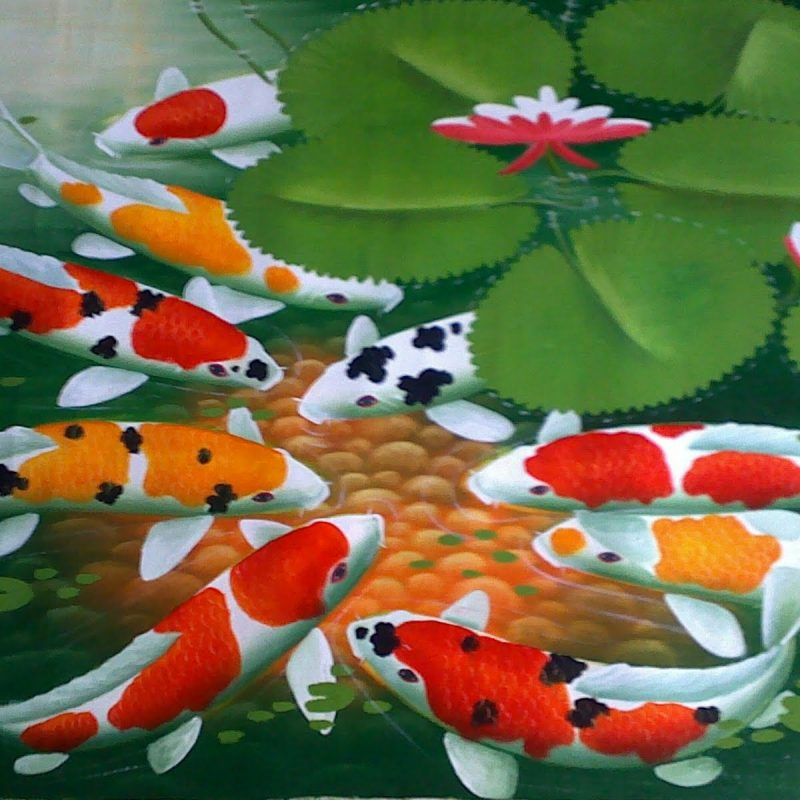 10 Most Popular Koi Fish Wallpaper Hd FULL HD 1080p For PC Background 2021 free download koi fish 7928 1600x1200 px hdwallsource 800x800