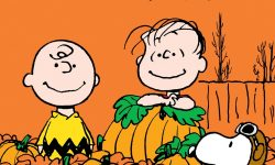 10 New Great Pumpkin Charlie Brown Pictures FULL HD 1920×1080 For PC Background