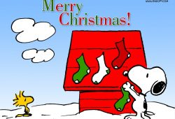 10 New Snoopy Merry Christmas Images FULL HD 1080p For PC Background