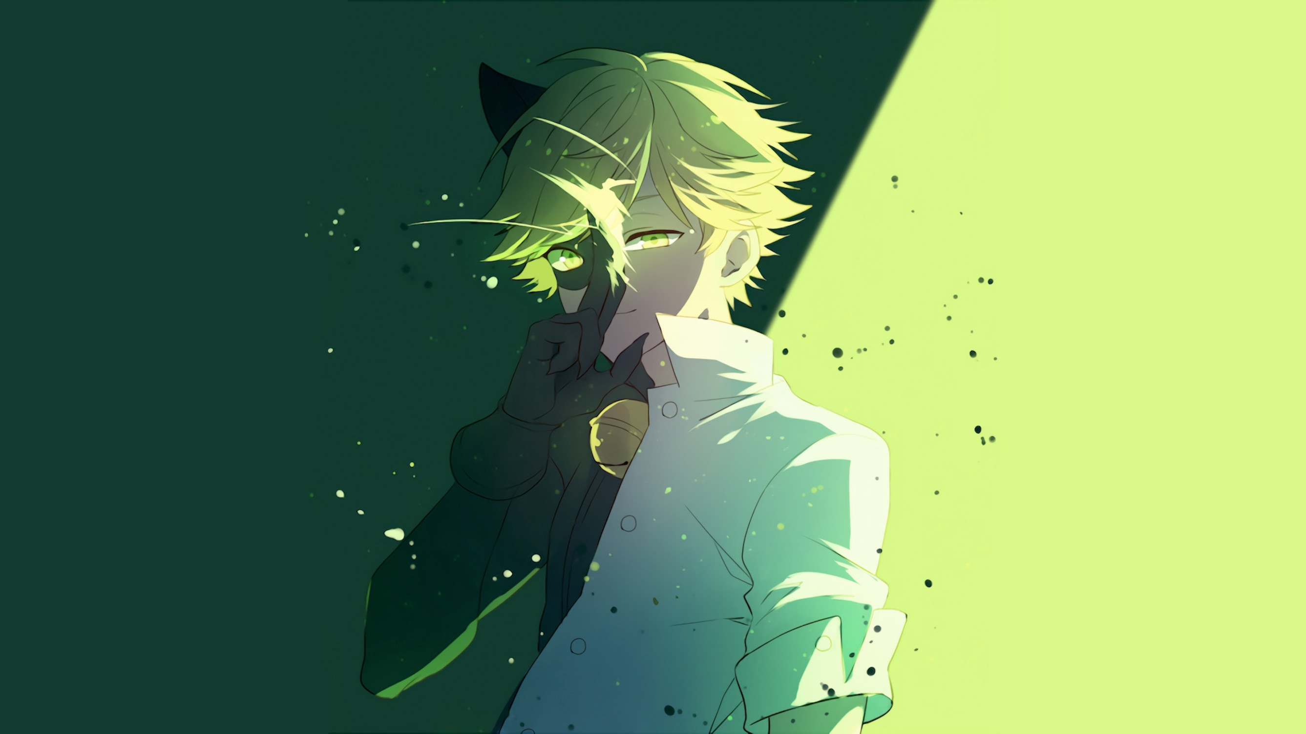 ladybug and chat noir wallpaper (75+ images)