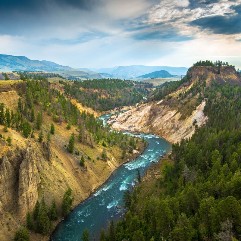 10 Best Yellowstone National Park Wallpaper Hd FULL HD 1080p For PC Background 2018 free download landscape yellowstone national park river wallpapers hd desktop 800x800