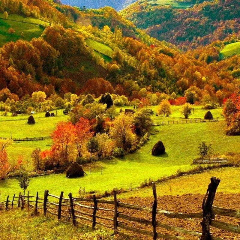 10 Top Fall Harvest Wallpaper Backgrounds FULL HD 1920×1080 For PC Background 2018 free download landscapes landscapes color leaves hills farm harvest autumn 800x800