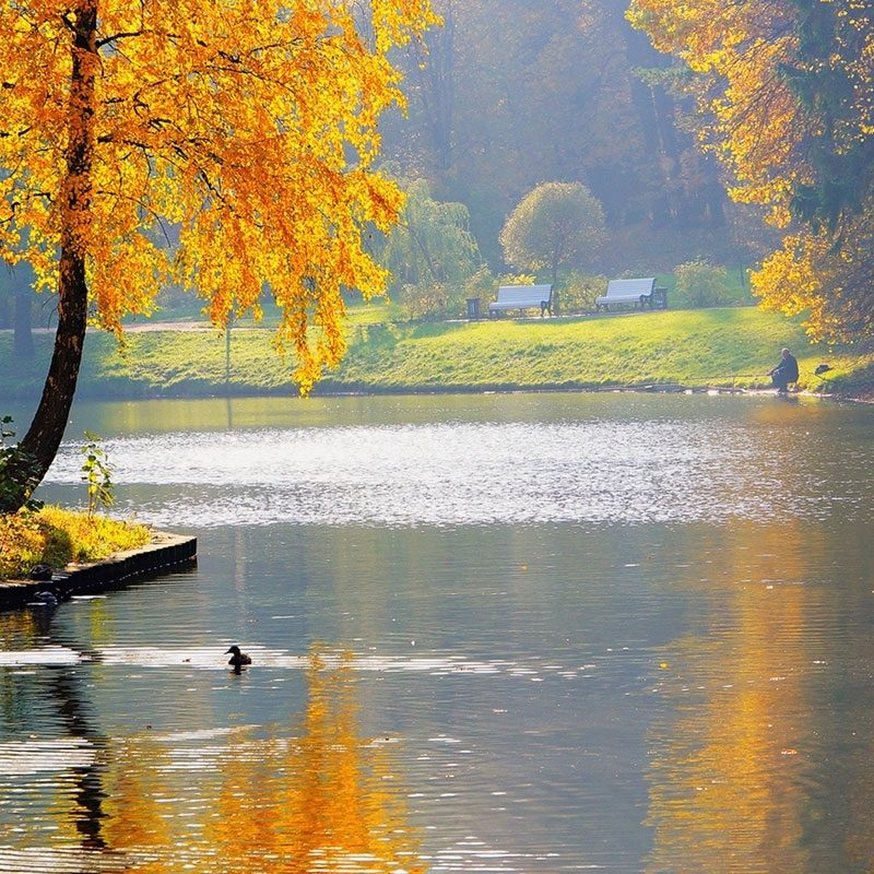 10 Best Free Seasonal Desktop Wallpaper FULL HD 1080p For PC Background 2018 free download late autumn seasonal lake views photography wallpaper 6 efbc8d landscape 800x800