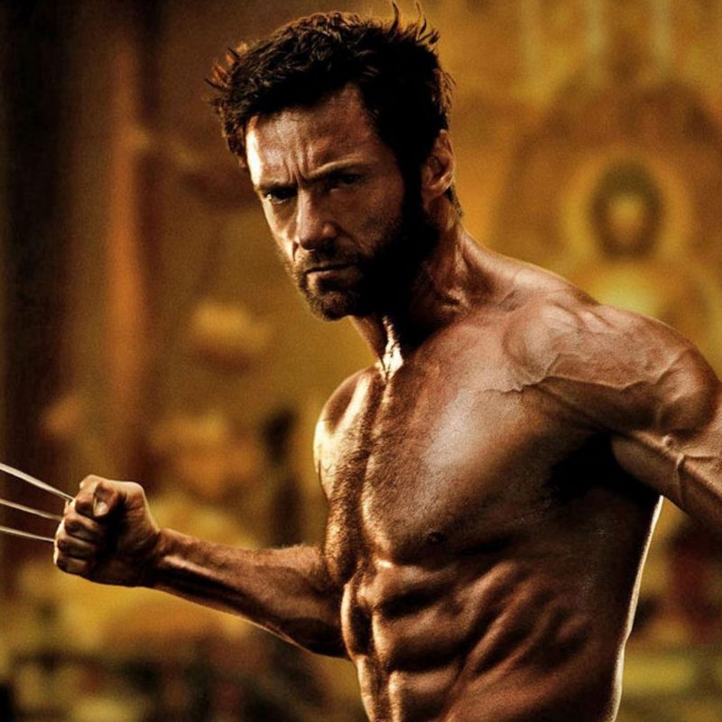 10 Best Wolverine Images Hugh Jackman FULL HD 1080p For PC Background 2020 free download lentrainement physique pour resembler a hugh jackman dans wolverine 800x800