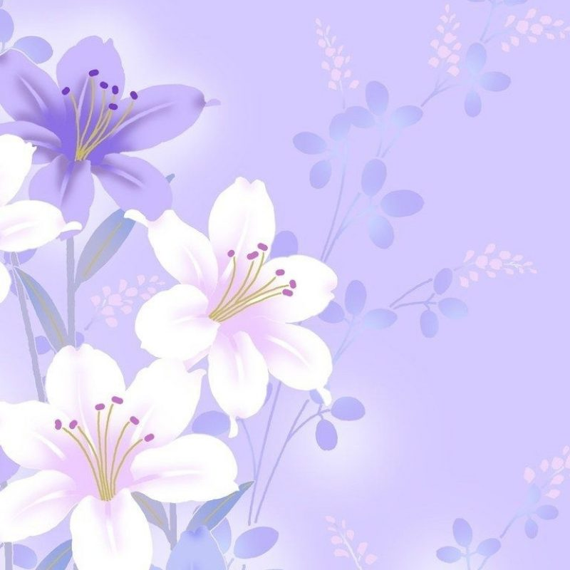 10 Most Popular Light Purple Flower Background FULL HD 1920×1080 For PC Desktop 2018 free download light violet flower background 12 background check all 800x800