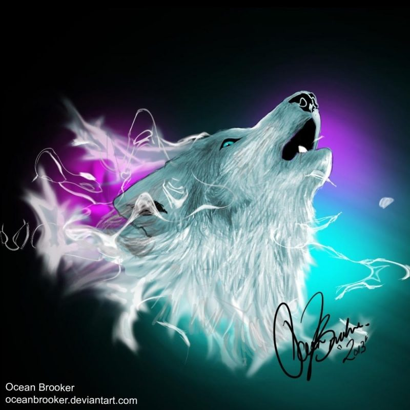 10 Latest Cool Wolf Backgrounds Light FULL HD 1920×1080 For PC Background 2018 free download lights wolf spiritoceanbrooker on deviantart 800x800