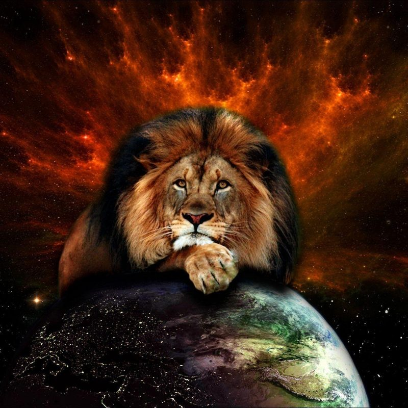 10 Best Lion Of Judah Image FULL HD 1920×1080 For PC Desktop 2018 free download lion of judah wallpapers wallpaper cave 800x800