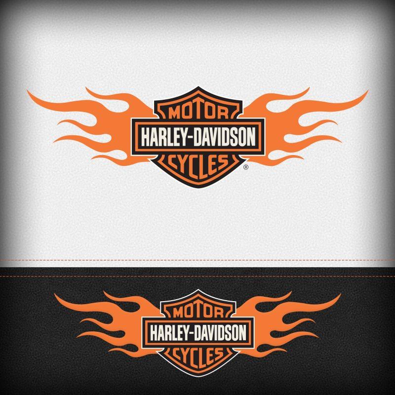 10 Best Harley Davidson Hd Logo FULL HD 1920×1080 For PC Background 2021 free download logos harley davidsonharley davidson 1 800x800