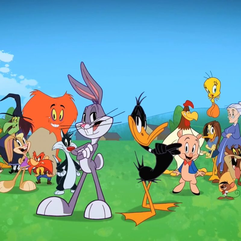 10 Latest Looney Tunes Wall Paper FULL HD 1920×1080 For PC Background 2020 free download looney tunes wallpaper image for ipad air 2 cartoons wallpapers 800x800