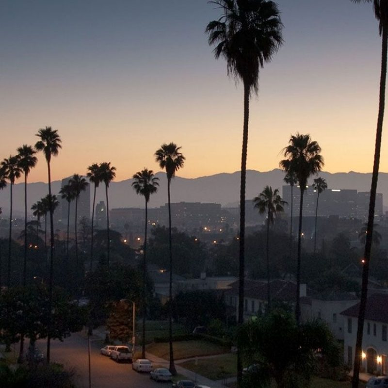 10 Latest Los Angeles Wallpaper Iphone FULL HD 1920×1080 For PC Desktop 2018 free download los angeles palm trees iphone wallpaper pinterest palm los 800x800