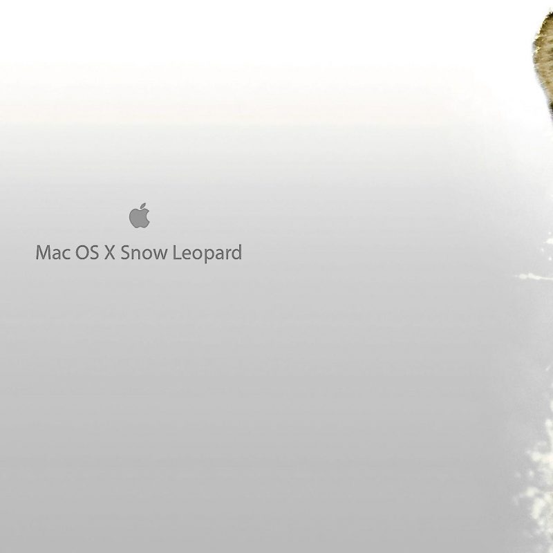 10 Top Mac Os X Snow Leopard Wallpaper FULL HD 1920×1080 For PC Background 2021 free download mac os x snow leopard wallpapers wallpaper cave 800x800