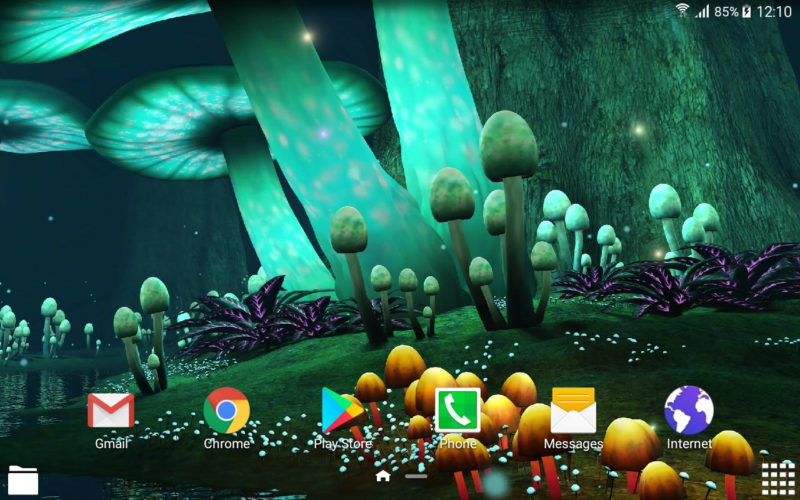 10 Top Magic Mushroom Wallpaper FULL HD 1080p For PC Background 2020 free download magic mushroom live wallpaper fur android apk herunterladen 800x500