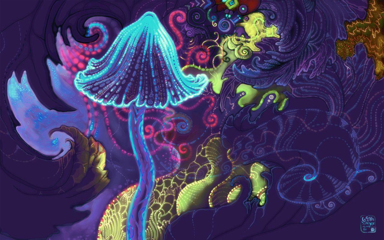 magic mushroom wallpapers - wallpaper cave