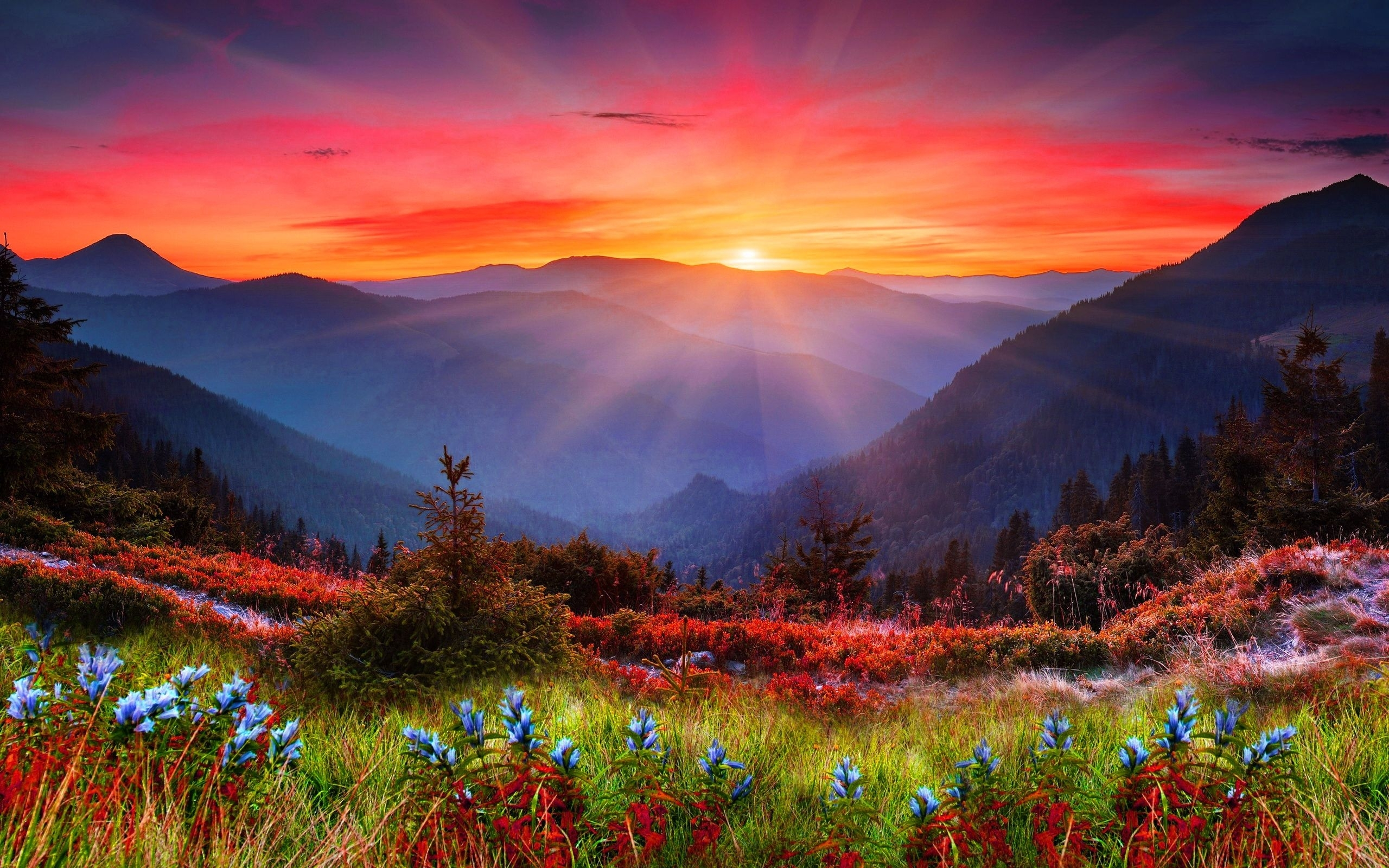 majestic mountain sunset | mountain sunset wide desktop background
