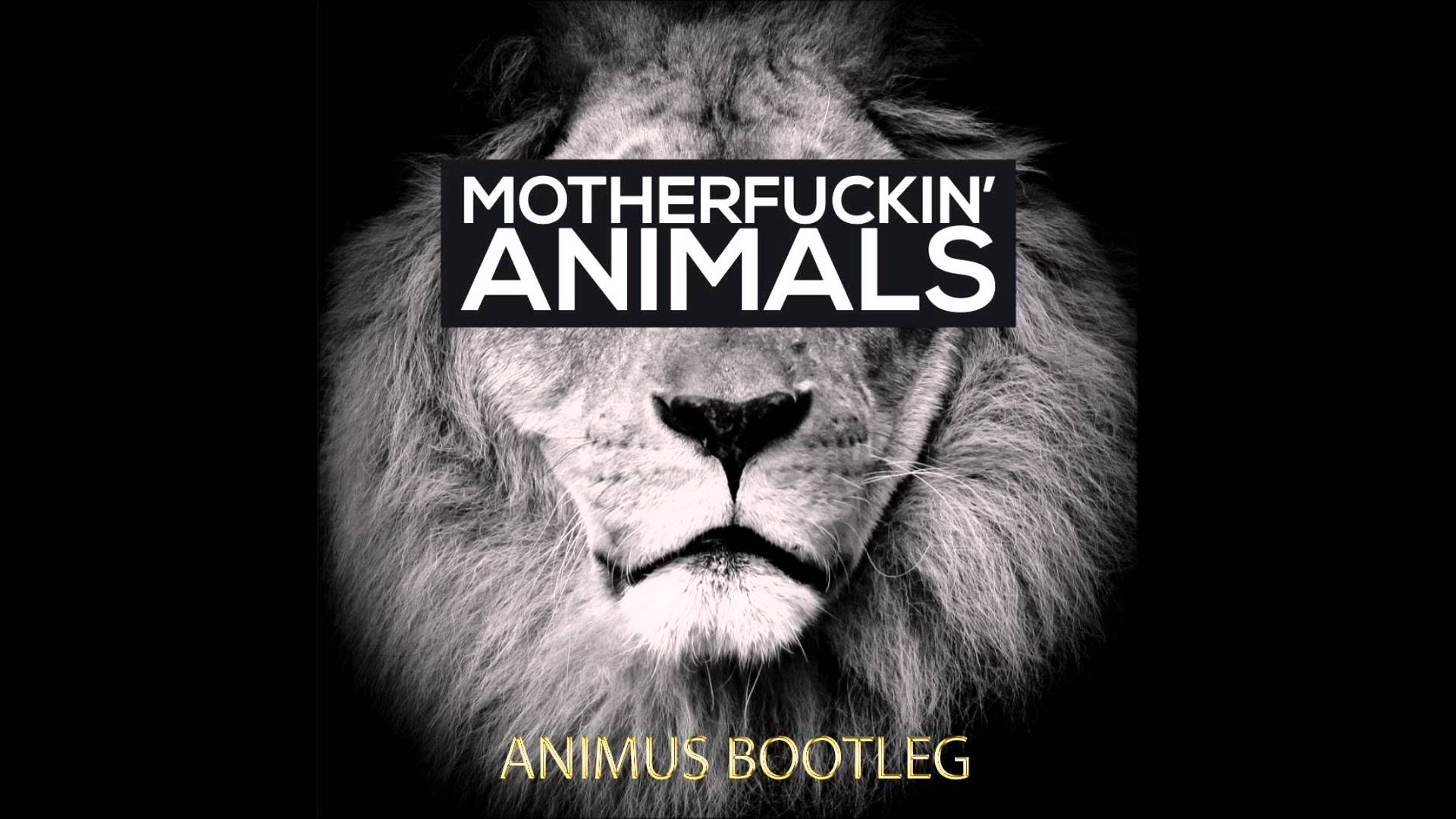 martin garrix - animals (animus bootleg) - youtube