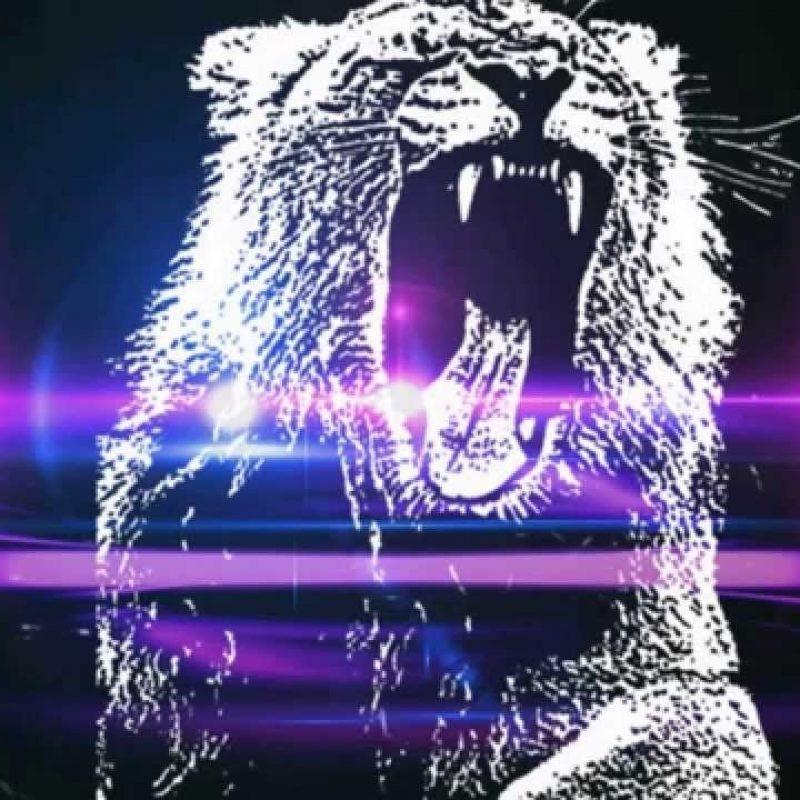 10 Best Martin Garrix Animals Logo FULL HD 1920×1080 For PC Background 2018 free download martin garrix animals slowed down youtube 800x800