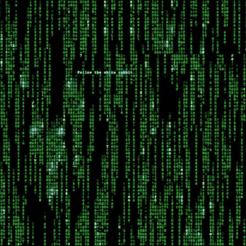 10 Top The Matrix Desktop Wallpaper FULL HD 1920×1080 For PC Background 2020 free download matrix wallpaper 24 800x800