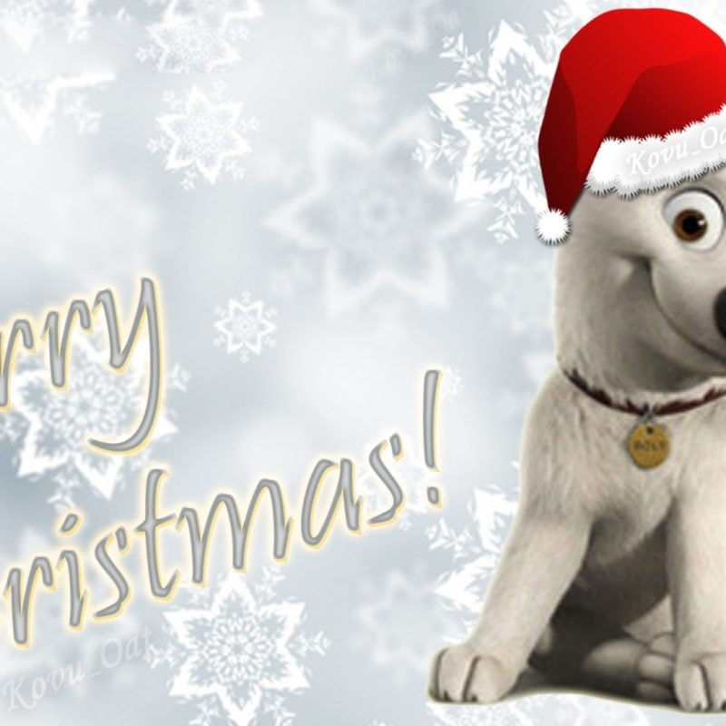 10 Top Cute Merry Christmas Wallpaper Dogs FULL HD 1080p For PC Desktop 2020 free download merry christmas disney cute bolt wallpaper hd disneys bolt 1920 1080 800x800