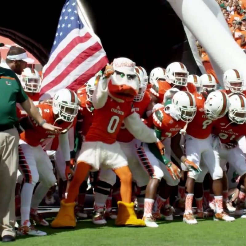 10 Top Miami Hurricane Football Wallpaper FULL HD 1080p For PC Background 2020 free download miami hurricanes 2016 pump up youtube 1 800x800