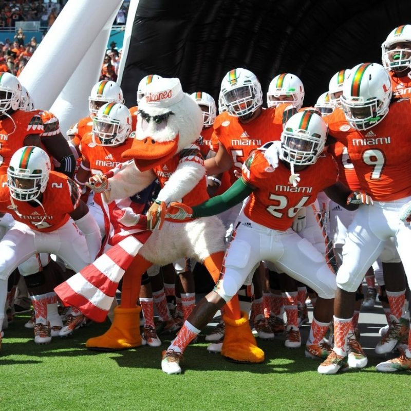 10 Top Miami Hurricane Football Wallpaper FULL HD 1080p For PC Background 2020 free download miami hurricanes football wallpaper hd 2016 iphone2lovely 1 800x800