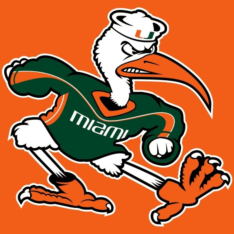10 Best Miami Hurricane Logos Pictures FULL HD 1080p For PC Desktop 2020 free download miami hurricanes iphone wallpaper collection of miami hurricanes 800x800