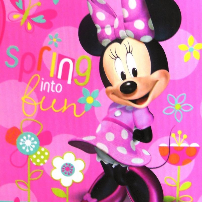 10 Best Minnie Mouse Wallpapers Free Full Hd 1920 1080 For Pc