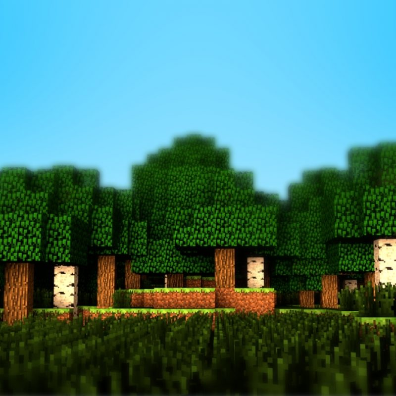 10 Best Minecraft Backgrounds For Computers FULL HD 1080p For PC Desktop 2020 free download minecraft wallpaper 875 verdewall 800x800