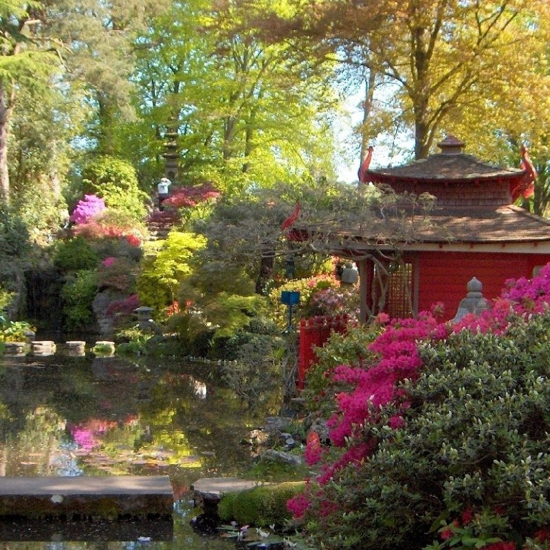 10 Most Popular Japanese Tea Garden Wallpaper FULL HD 1920×1080 For PC Background 2018 free download misc japanese tea garden house nature desktop backgrounds for hd 16 800x800