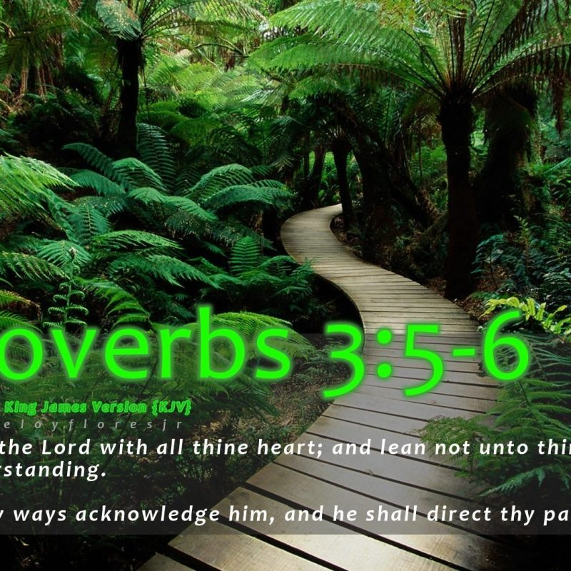 10 Latest Bible Verses Wallpapers Free Download FULL HD 1920×1080 For PC Background 2021 free download misc proverbs bible verse wallpaper wide for hd 169 high 800x800