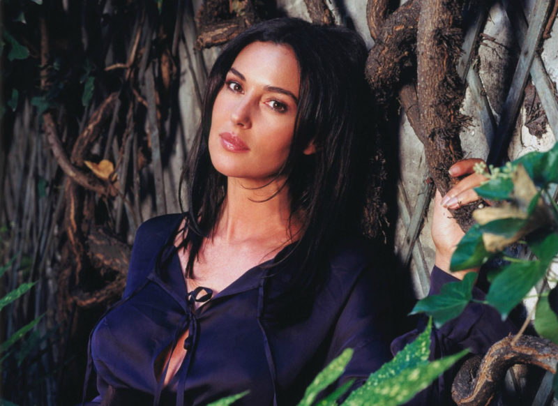 10 Latest Monica Bellucci Wallpaper FULL HD 1920×1080 For PC Desktop 2018 free download monica bellucci wallpaper and background image 1804x1313 id 800x582