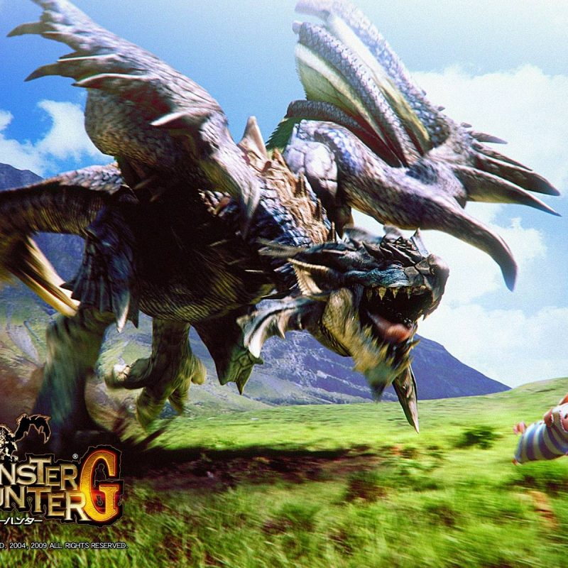 10 Best Monster Hunter X Wallpaper FULL HD 1080p For PC Background 2020 free download monster hunter wallpapers wallpaper cave 2 800x800