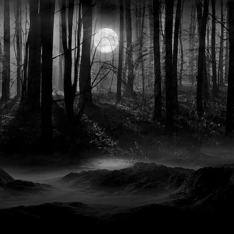 10 Best Dark Forest Background With Moon FULL HD 1080p For PC Background 2021 free download moon scenery backgrounds dark forest moon wallpaper lunachild 800x800