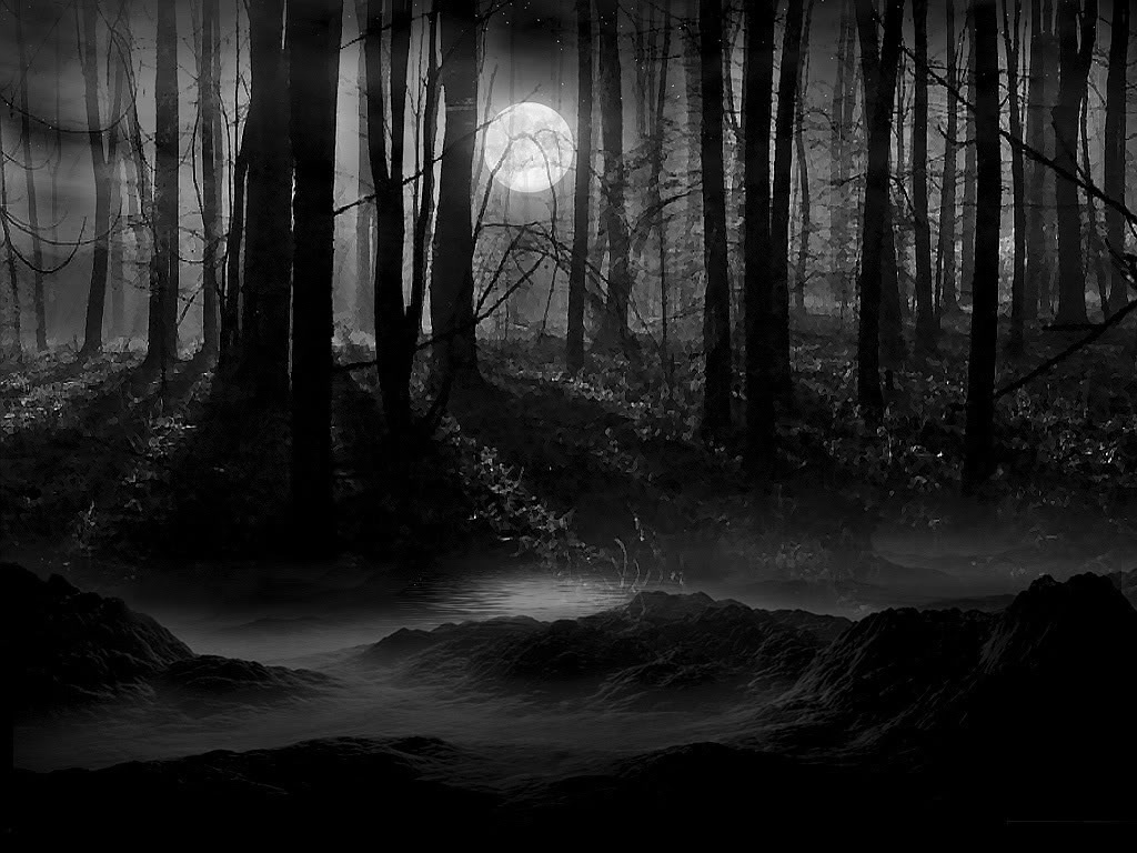 moon scenery backgrounds | dark forest moon wallpaper | lunachild