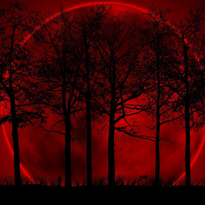 10 New Blood Moon Wallpaper Hd FULL HD 1080p For PC Background 2021 free download moon wallpaper images for windows bloodred moon wallpapers 800x800