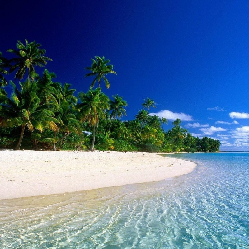 10 Top Most Beautiful Beaches In The World Wallpaper FULL HD 1080p For PC Desktop 2018 free download most beautiful beach wallpapers wallpaper cave 1 800x800