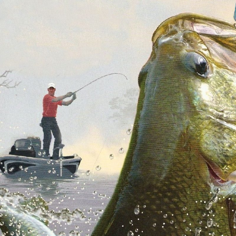 10 Most Popular Bass Fishing Screen Saver FULL HD 1920×1080 For PC Background 2021 free download most beautiful collection fishing wallpapers hdq fishing 800x800