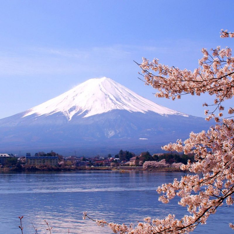 10 Top Mount Fuji Hd Wallpaper FULL HD 1080p For PC Desktop 2020 free download mount fuji wallpapers wallpaper cave 1 800x800