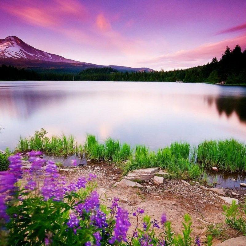 10 New Beautiful Sunset Mountain Wallpapers FULL HD 1920×1080 For PC Background 2021 free download mountain beautiful lake sunset 1280x1024 iwallhd wallpaper hd 800x800