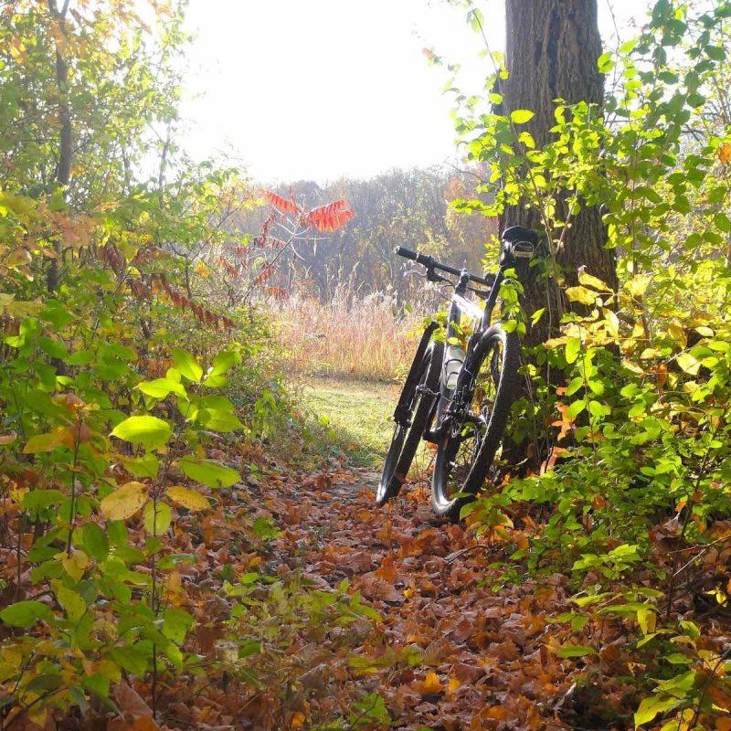 10 New Mountain Bike Trail Wallpaper FULL HD 1920×1080 For PC Desktop 2018 free download mountain bike trail images wallpaper 800x800