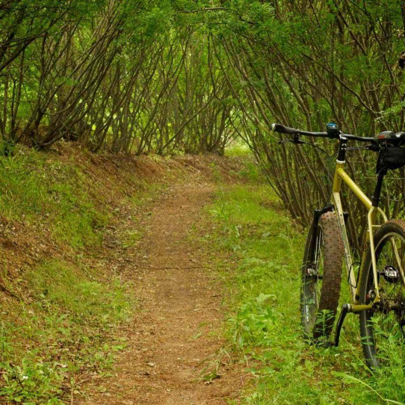 10 New Mountain Bike Trail Wallpaper FULL HD 1920×1080 For PC Desktop 2021 free download mountain bike trail pics 800x800