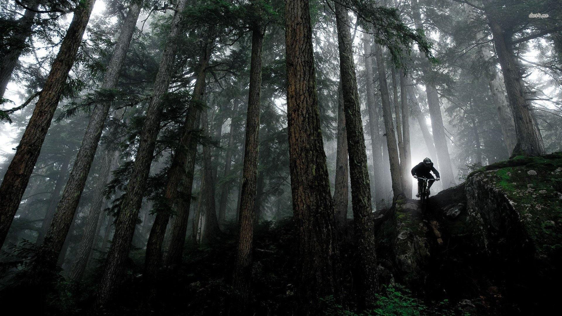 10 New Hd Mountain Bike Wallpaper Full Hd 1920 1080 For Pc Desktop