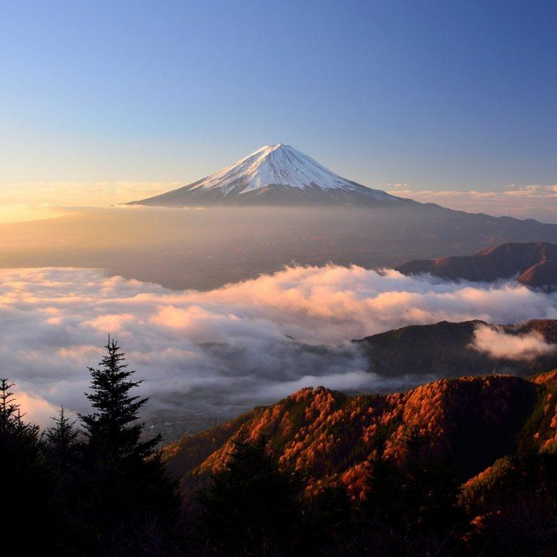 10 Best Mt. Fuji Wallpaper FULL HD 1920×1080 For PC Background 2018 free download mt fuji widescreen hd wallpaper 51288 2560x1440 px hdwallsource 800x800