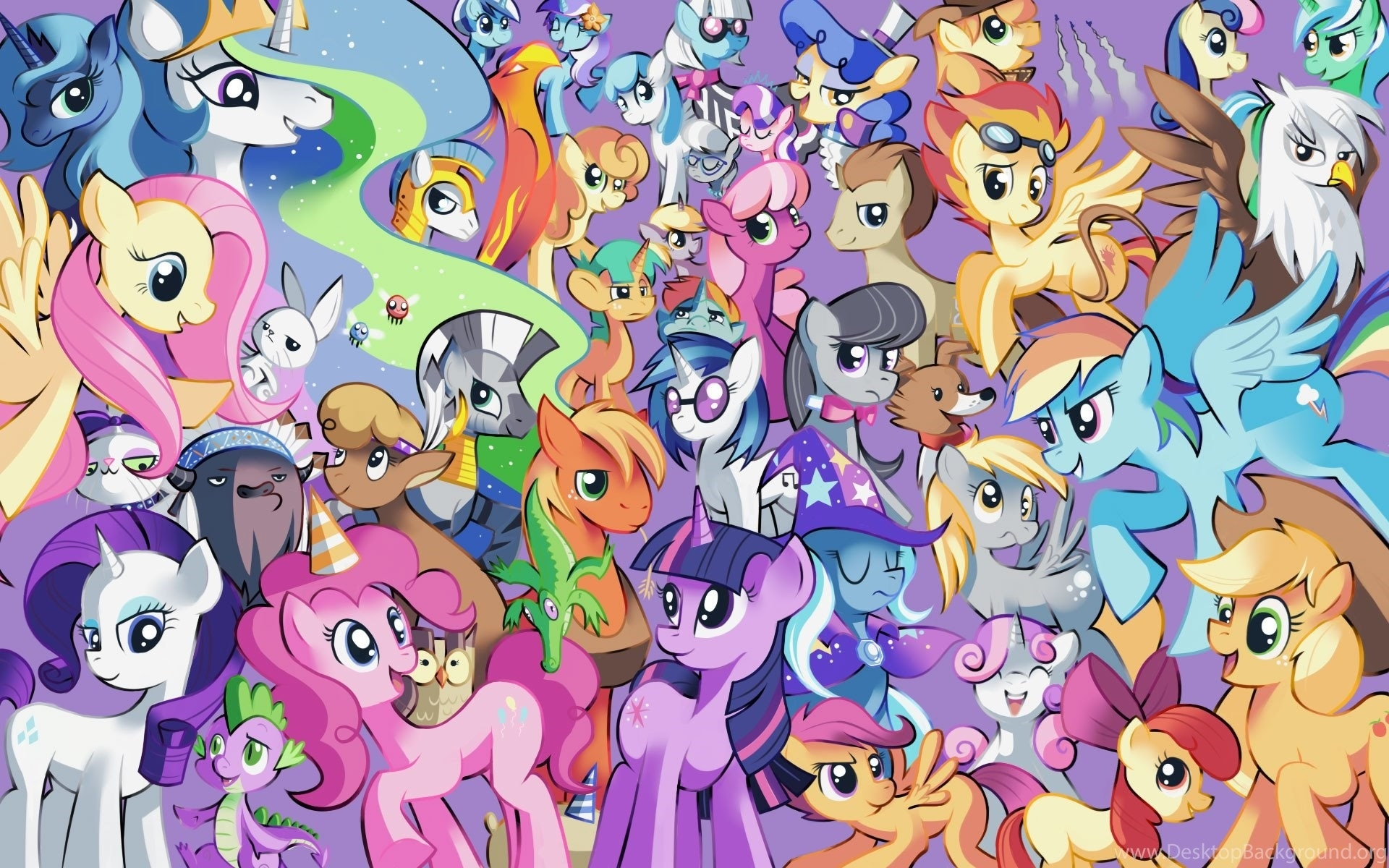 my little pony friendship is magic, angel, rainbow dash  desktop