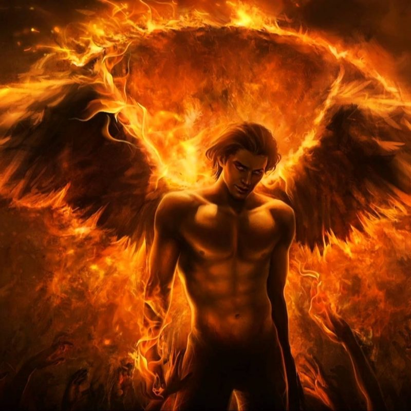 10 New Phoenix Rising From The Ashes Wallpaper FULL HD 1080p For PC Background 2018 free download my story part 3 the phoenix rises dad starting over 800x800