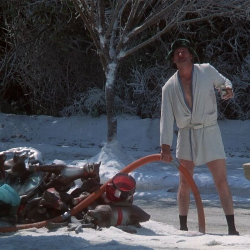 10 Best National Lampoon's Christmas Vacation Wallpaper FULL HD 1920×1080 For PC Background 2020 free download national lampoons christmas vacation national lampoon christmas 800x800