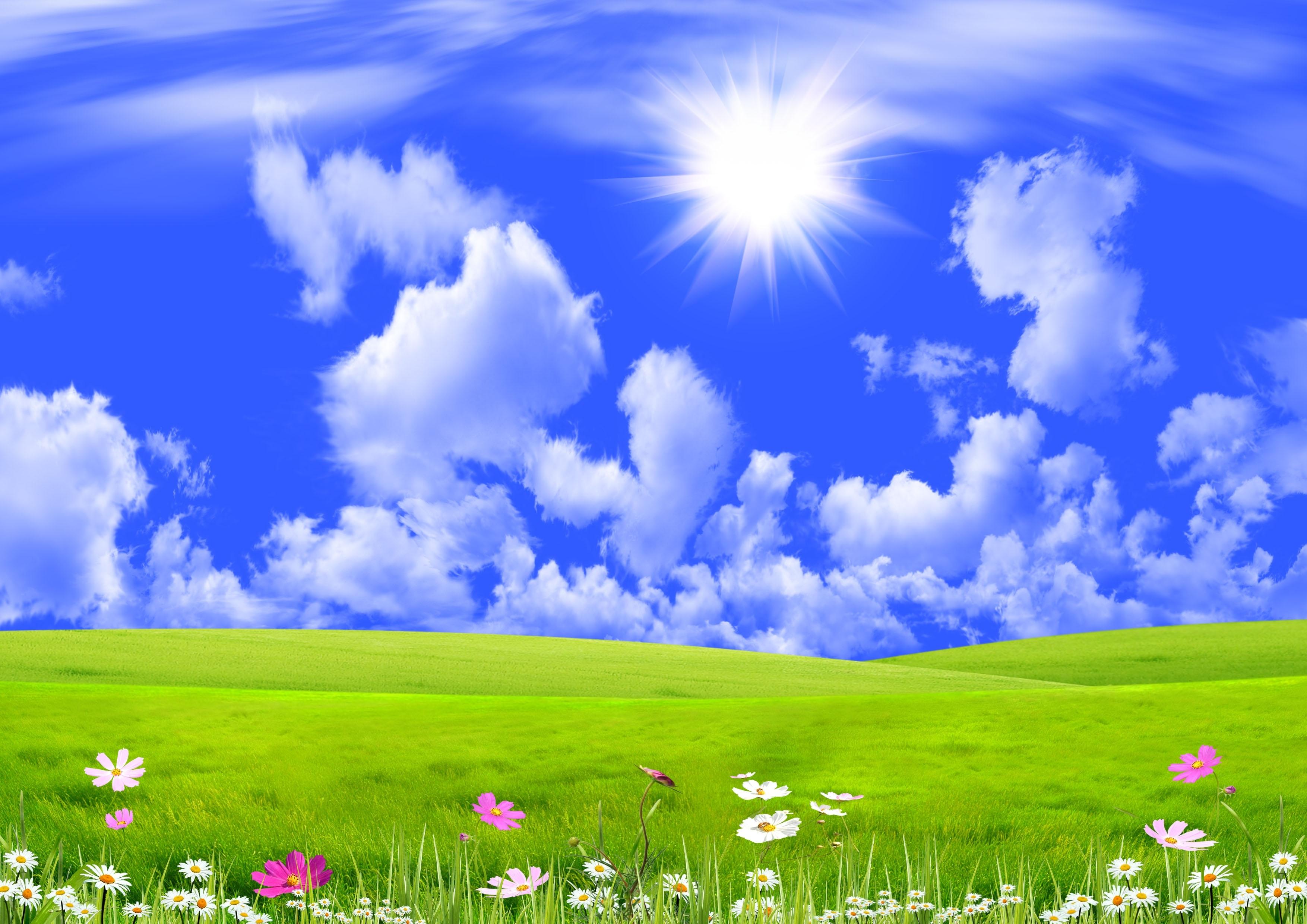 nature image 4525 - hdwpro