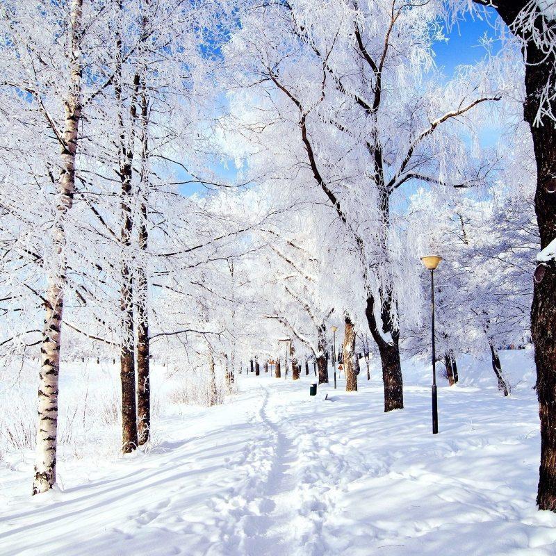 10 Latest Winter Wonderland Backgrounds For Desktop FULL HD 1080p For PC Desktop 2020 free download nature landscape winter wonderland wallpapers desktop phone 2 800x800