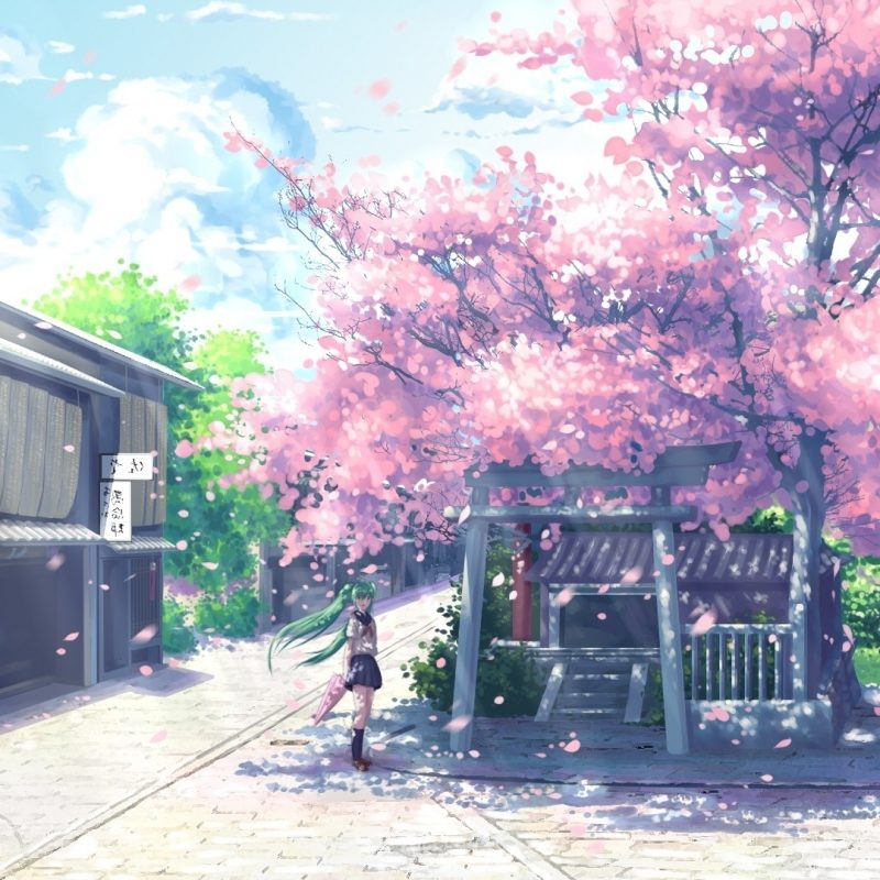 10 Most Popular Cherry Blossom Wallpaper Anime FULL HD 1920×1080 For PC Desktop 2018 free download new cherry blossom wallpaper desktop 1920x1080 anime design anime 800x800