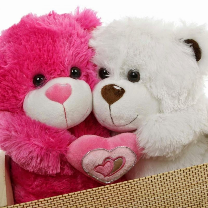 10 New Teddy Bear Love Image FULL HD 1080p For PC Background 2018 free download new download images of love teddy i love you teddy bear wallpapers 800x800
